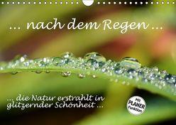 … nach dem Regen … die Natur erstrahlt in glitzernder Schönheit (Wandkalender 2019 DIN A4 quer) von GUGIGEI