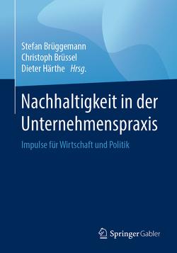 Nachhaltigkeit in der Unternehmenspraxis von Brüggemann,  Stefan, Brüssel,  Christoph, Härthe,  Dieter