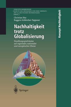 Nachhaltigkeit trotz Globalisierung von Hey,  Christian, Schleicher-Tappeser,  Ruggero