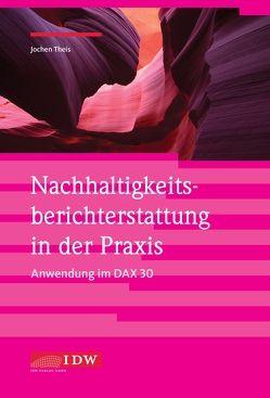 Nachhaltigkeitsberichterstattung in der Praxis – Anwendung im DAX 30 von Theis,  Jochen