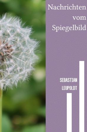 Nachrichten vom Spiegelbild von Leupoldt,  Sebastian