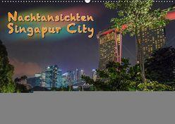 Nachtansichten Singapur City (Wandkalender 2019 DIN A2 quer) von Gödecke,  Dieter