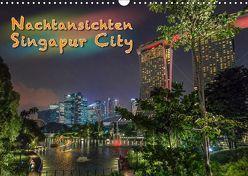 Nachtansichten Singapur City (Wandkalender 2019 DIN A3 quer) von Gödecke,  Dieter