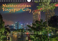 Nachtansichten Singapur City (Wandkalender 2019 DIN A4 quer) von Gödecke,  Dieter