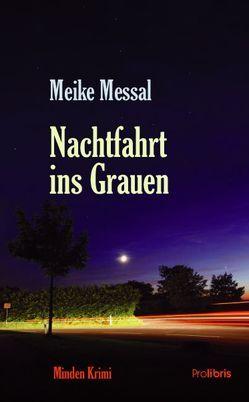 Nachtfahrt ins Grauen von Messal,  Meike