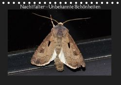 Nachtfalter – Unbekannte Schönheiten (Tischkalender 2019 DIN A5 quer) von Wagner,  Renate