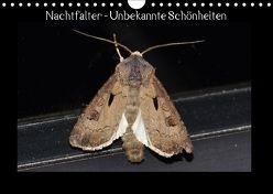 Nachtfalter – Unbekannte Schönheiten (Wandkalender 2018 DIN A4 quer) von Wagner,  Renate