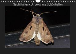 Nachtfalter – Unbekannte Schönheiten (Wandkalender 2019 DIN A4 quer) von Wagner,  Renate