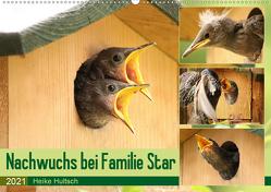Nachwuchs bei Familie Star (Wandkalender 2021 DIN A2 quer) von Hultsch,  Heike