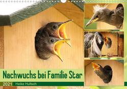 Nachwuchs bei Familie Star (Wandkalender 2021 DIN A3 quer) von Hultsch,  Heike