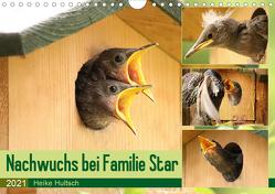 Nachwuchs bei Familie Star (Wandkalender 2021 DIN A4 quer) von Hultsch,  Heike