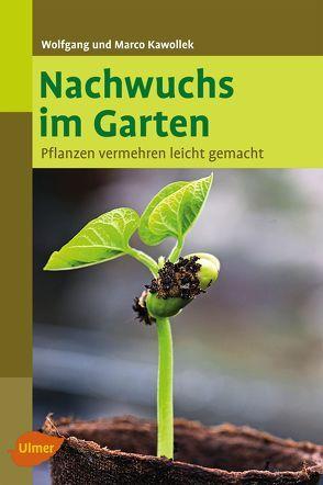 Nachwuchs im Garten von Kawollek,  Marco, Kawollek,  Wolfgang