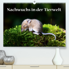 Nachwuchs in der Tierwelt (Premium, hochwertiger DIN A2 Wandkalender 2021, Kunstdruck in Hochglanz) von GUGIGEI