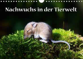 Nachwuchs in der Tierwelt (Wandkalender 2018 DIN A4 quer) von GUGIGEI