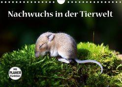 Nachwuchs in der Tierwelt (Wandkalender 2019 DIN A4 quer) von GUGIGEI