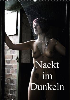 Nackt im Dunkeln / 2018 (Wandkalender 2018 DIN A2 hoch) von Lee,  Juri