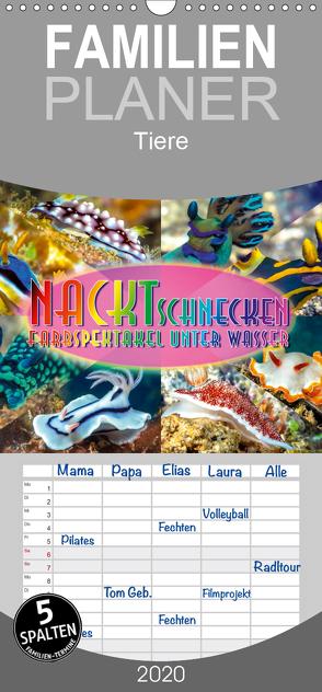 Nacktschnecken, Farbspektakel unter Wasser – Familienplaner hoch (Wandkalender 2020 , 21 cm x 45 cm, hoch) von Gödecke,  Dieter