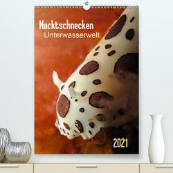 Nacktschnecken – Unterwasserwelt 2021 (Premium, hochwertiger DIN A2 Wandkalender 2021, Kunstdruck in Hochglanz) von Weber-Gebert,  Claudia