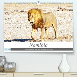 Namibia, Faszination Wüste und Tierwelt (Premium, hochwertiger DIN A2 Wandkalender 2020, Kunstdruck in Hochglanz) von Kärcher,  Linde