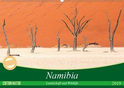 Namibia Landschaft und Wildlife (Wandkalender 2019 DIN A2 quer) von Junio,  Michele