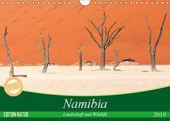 Namibia Landschaft und Wildlife (Wandkalender 2019 DIN A4 quer) von Junio,  Michele