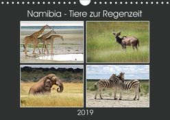Namibia – Tiere zur Regenzeit 2019 (Wandkalender 2019 DIN A4 quer) von Hamburg, Mirko Weigt,  ©