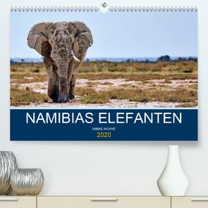 Namibias Elefanten (Premium, hochwertiger DIN A2 Wandkalender 2020, Kunstdruck in Hochglanz) von Woyke,  Wibke