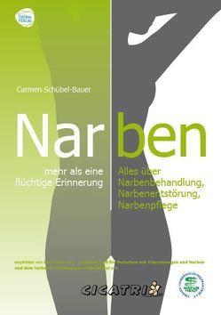 Narben – mehr als eine flüchtige Erinnerung von Bauer-Schübel,  Carmen