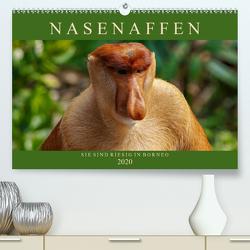 Nasenaffen von Borneo (Premium, hochwertiger DIN A2 Wandkalender 2020, Kunstdruck in Hochglanz) von Wünsche,  Arne