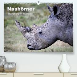 Nashörner – Begegnungen in Afrika (Premium, hochwertiger DIN A2 Wandkalender 2020, Kunstdruck in Hochglanz) von Herzog,  Michael