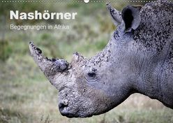 Nashörner – Begegnungen in Afrika (Wandkalender 2019 DIN A2 quer) von Herzog,  Michael