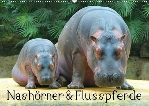 Nashörner & Flusspferde (Wandkalender 2018 DIN A2 quer) von Stanzer,  Elisabeth
