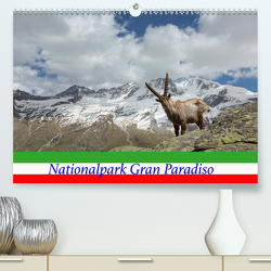 Nationalpark Gran Paradiso(Premium, hochwertiger DIN A2 Wandkalender 2020, Kunstdruck in Hochglanz) von Schörkhuber,  Johann