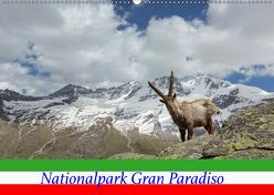 Nationalpark Gran Paradiso (Wandkalender 2019 DIN A2 quer) von Schörkhuber,  Johann