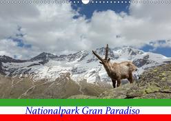 Nationalpark Gran Paradiso (Wandkalender 2019 DIN A3 quer) von Schörkhuber,  Johann