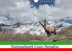 Nationalpark Gran Paradiso (Wandkalender 2019 DIN A4 quer) von Schörkhuber,  Johann