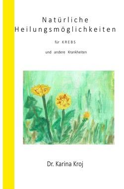 Natürliche Heilungsmöglichkeiten für Krebs und andere Krankheiten von Kroj,  Karina