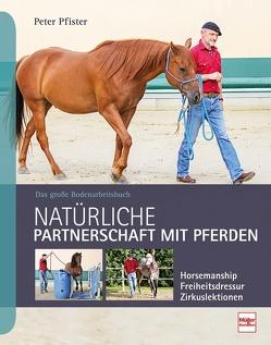 Natürliche Partnerschaft mit Pferden von Pfister,  Peter