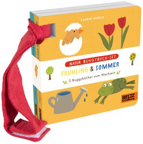 Natur Buggybuch-Set: Frühling und Sommer von Wiehle,  Katrin