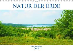 Natur der Erde (Wandkalender 2019 DIN A3 quer) von Brüggeboes,  Nico