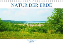 Natur der Erde (Wandkalender 2019 DIN A4 quer) von Brüggeboes,  Nico