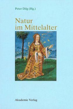 Natur im Mittelalter von Dilg,  Peter