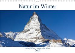 Natur im Winter – Lust auf NaTour (Wandkalender 2020 DIN A3 quer) von Riedmiller,  Andreas