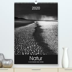 Natur in Schwarz und Weiß (Premium, hochwertiger DIN A2 Wandkalender 2020, Kunstdruck in Hochglanz) von Koch,  Lucyna