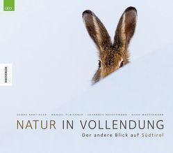 Natur in Vollendung von Kantioler,  Georg, Plaickner,  Manuel, Wassermann,  Hugo, Wassermann,  Johannes