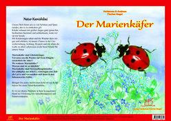 Natur-Kamishibai – Der Marienkäfere von Fischer-Nagel Andreas, Fischer-Nagel,  Heiderose, Zornik,  Marzena