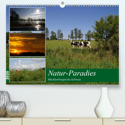 Natur-Paradies Mecklenburgische Schweiz (Premium, hochwertiger DIN A2 Wandkalender 2020, Kunstdruck in Hochglanz) von Katharina Tessnow,  Antonia