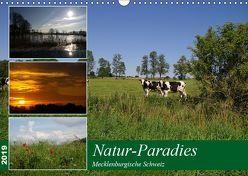 Natur-Paradies Mecklenburgische Schweiz (Wandkalender 2019 DIN A3 quer) von Katharina Tessnow,  Antonia