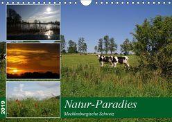 Natur-Paradies Mecklenburgische Schweiz (Wandkalender 2019 DIN A4 quer) von Katharina Tessnow,  Antonia