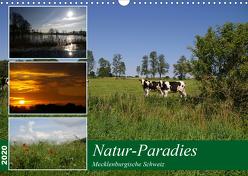 Natur-Paradies Mecklenburgische Schweiz (Wandkalender 2020 DIN A3 quer) von Katharina Tessnow,  Antonia